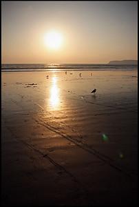 Coronado beach, sunset