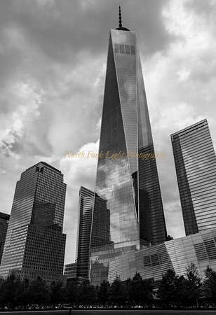 Clouds in the Freedom Tower