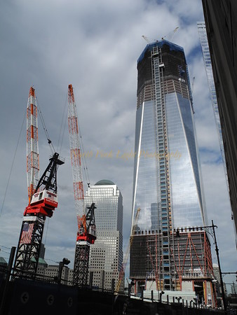 Freedom Towers Reaching for the sky