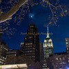 Moonlight and the Empire State Building look down on Bryant Park.