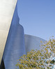 The Walt Disney Concert Hall has some soft edges