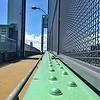 Ward's Island Walk Bridge - Color