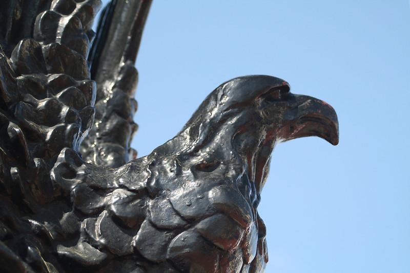 A DC Eagle