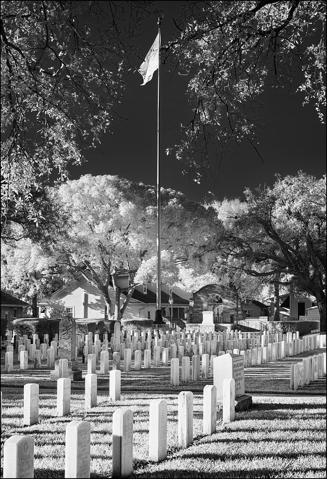 Testament to the Fallen Soldier