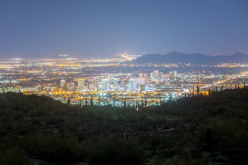 Phoenix Night Light