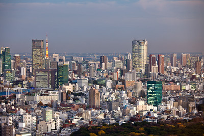 Tokyo Tower, Roppongi Hills and Bay from Shinjuku