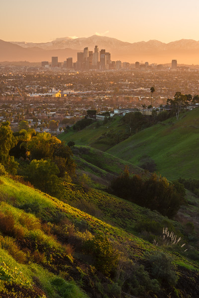 Layers of sunlight from Kenneth Hahn Park