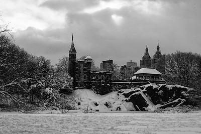 Central Park after a Storm