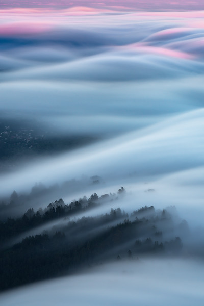Mill Valley Mist