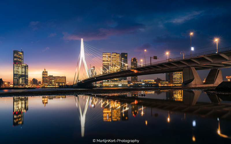 Rotterdam mornings