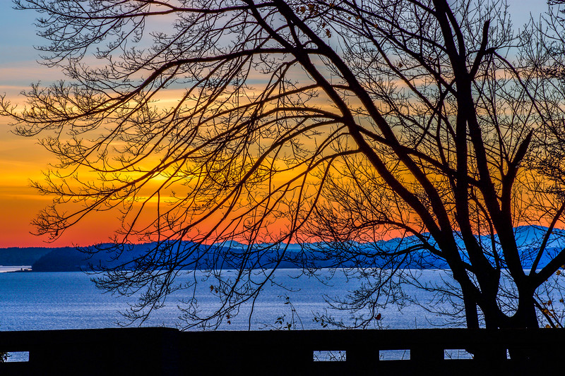 Marshall Park Sunset