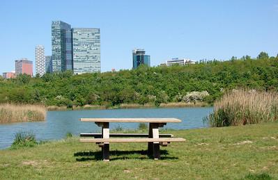 Dag 8: stadspark en bouwcentrum