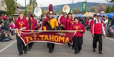Daffodil Parade in Orting Wa 2015-136
