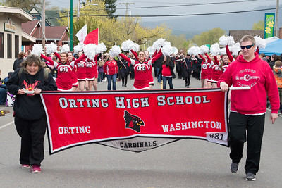 Daffodil Parade in Orting Wa 2015-181