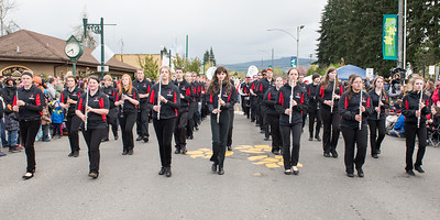 Daffodil Parade in Orting Wa 2015-199