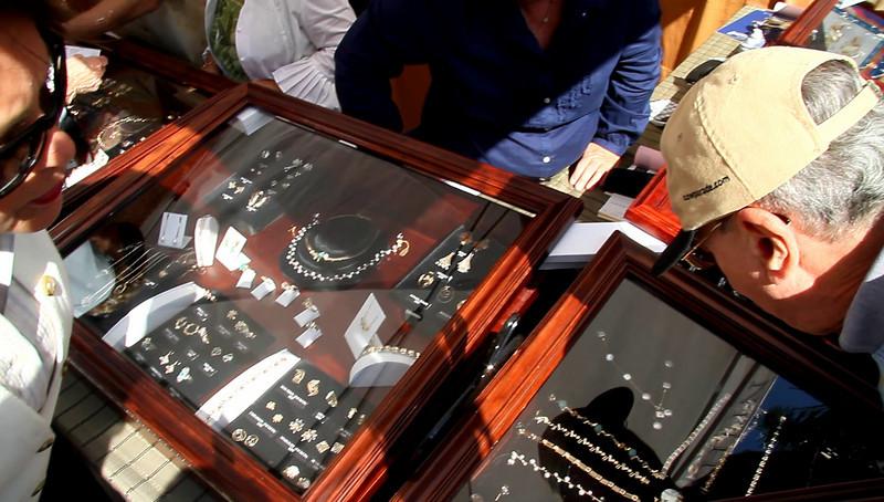 Boca Art Festival 2010Feb8 Video Clips -  (5)