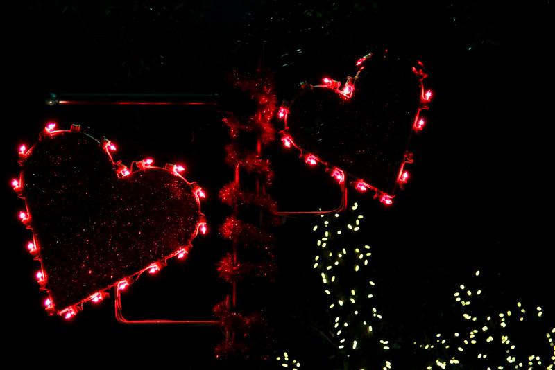 Delray Festival Feb 14, 2010 Valentines Day  (72)