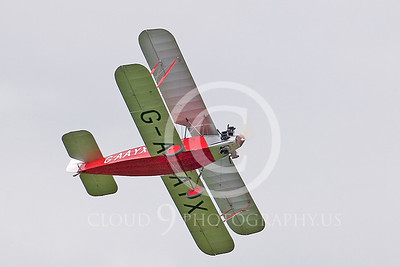 CIW--Southern Martlet 00002 by Tony Fairey
