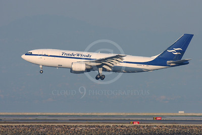 AIRBUS A300 00002 AIRBUS A300 TRADE WINDS N8205C by Peter J Mancus