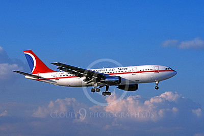 A300 00014 Airbus A300 Carnival N221EA December 1994 by Peter J Mancus