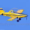 CropDuster 0004 A banking, descending, Air Tractor Inc  AT-401 crop duster, N9179N, Wasco, California 8-2017 crop duster picture by Peter J  Mancus     DONEwt