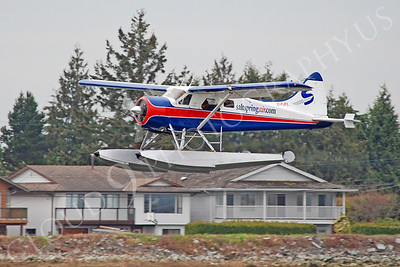 CFP 00006 Salt Spring Air de Havilland Canada DHC-2 Mark I C-FJFL by Alasdair MacPhail