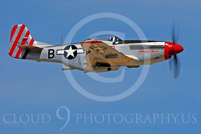 Race Airplane Abigail Rose 00012 North American P-51 Mustang race airplane Abigail Rose at Reno air races by Peter J Mancus
