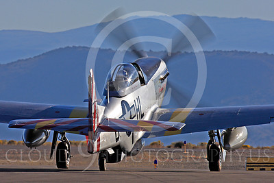 Race Airplane Abigail Rose 00035 North American P-51 Mustang race airplane Abigail Rose at Reno air races by Peter J Mancus