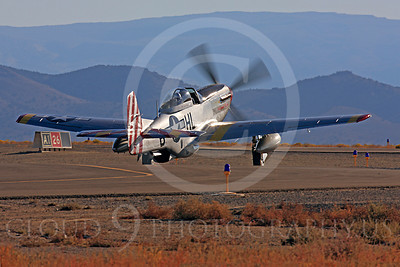Race Airplane Abigail Rose 00005 North American P-51 Mustang race airplane Abigail Rose at Reno air races by Peter J Mancus