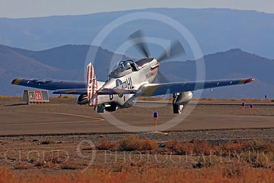Race Airplane Abigail Rose 00005 North American P-51 Mustang race airplane Abigail Rose at Reno air races by Peter J Mancus