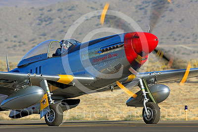 Race Airplane Abigail Rose 00001 North American P-51 Mustang race airplane Abigail Rose at Reno air races by Peter J Mancus