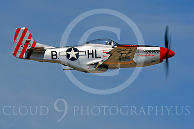 Race Airplane Abigail Rose 00028 North American P-51 Mustang race airplane Abigail Rose at Reno air races by Peter J Mancus