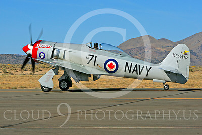 Race Airplane Sawbones 00009 Hawker Sea Fury Sawbones at Reno air races by Peter J Mancus