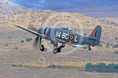Race Airplane Argonaut 00052 Hawker Sea Fury Argonaut N19SF race airplane at Reno air races by Peter J Mancus