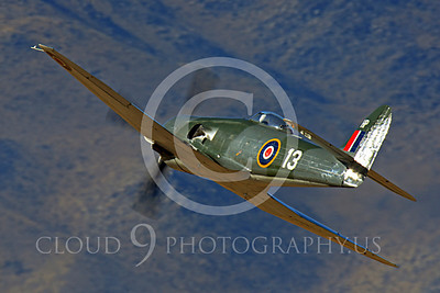 Race Airplane Argonaut 00046 Hawker Sea Fury Argonaut N19SF race airplane at Reno air races by Peter J Mancus