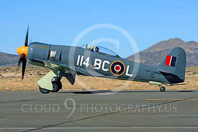 Race Airplane Argonaut 00051 Hawker Sea Fury Argonaut N19SF race airplane at Reno air races by Peter J Mancus