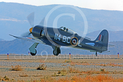 Race Airplane Argonaut 00011 Hawker Sea Fury Argonaut N19SF race airplane at Reno air races by Peter J Mancus