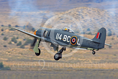 Race Airplane Argonaut 00010 Hawker Sea Fury Argonaut N19SF race airplane at Reno air races by Peter J Mancus