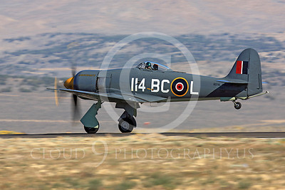Race Airplane Argonaut 00029 Hawker Sea Fury Argonaut N19SF race airplane at Reno air races by Peter J Mancus