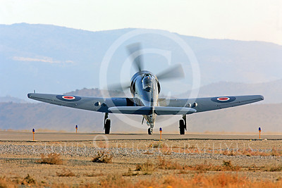 Race Airplane Argonaut 00007 Hawker Sea Fury Argonaut N19SF race airplane at Reno air races by Peter J Mancus