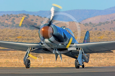 Race Airplane Argonaut 00001 Hawker Sea Fury Argonaut N19SF race airplane at Reno air races by Peter J Mancus