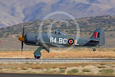 Race Airplane Argonaut 00005 Hawker Sea Fury Argonaut N19SF race airplane at Reno air races by Peter J Mancus