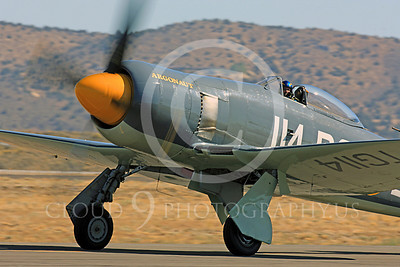 Race Airplane Argonaut 00047 Hawker Sea Fury Argonaut N19SF race airplane at Reno air races by Peter J Mancus