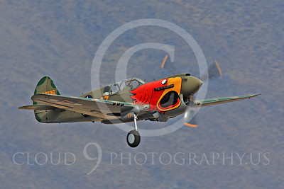 Race Airplane Parott Head 00023 Curtiss P-40 Warhawk Parott Head NL1195N at Reno air races by Peter J Mancus
