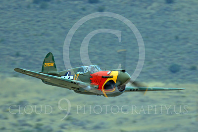 Race Airplane Parott Head 00012 Curtiss P-40 Warhawk Parott Head NL1195N at Reno air races by Peter J Mancus