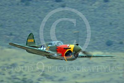 Race Airplane Parott Head 00012 Curtiss P-40 Warhawk Parott Head NL1195N at Reno air races by Peter J Mancus