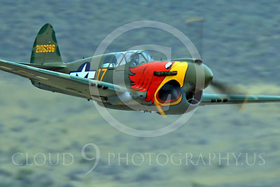 Race Airplane Parott Head 00020 Curtiss P-40 Warhawk Parott Head NL1195N at Reno air races by Peter J Mancus