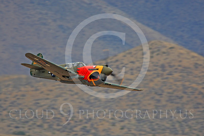 Race Airplane Parott Head 00022 Curtiss P-40 Warhawk Parott Head NL1195N at Reno air races by Peter J Mancus