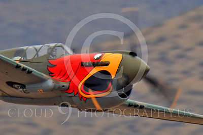 Race Airplane Parott Head 00011 Curtiss P-40 Warhawk Parott Head NL1195N at Reno air races by Peter J Mancus