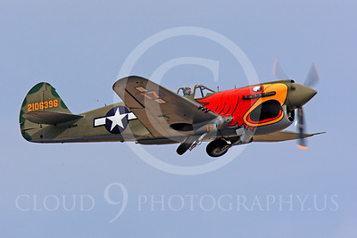 Race Airplane Parott Head 00014 Curtiss P-40 Warhawk Parott Head NL1195N at Reno air races by Peter J Mancus